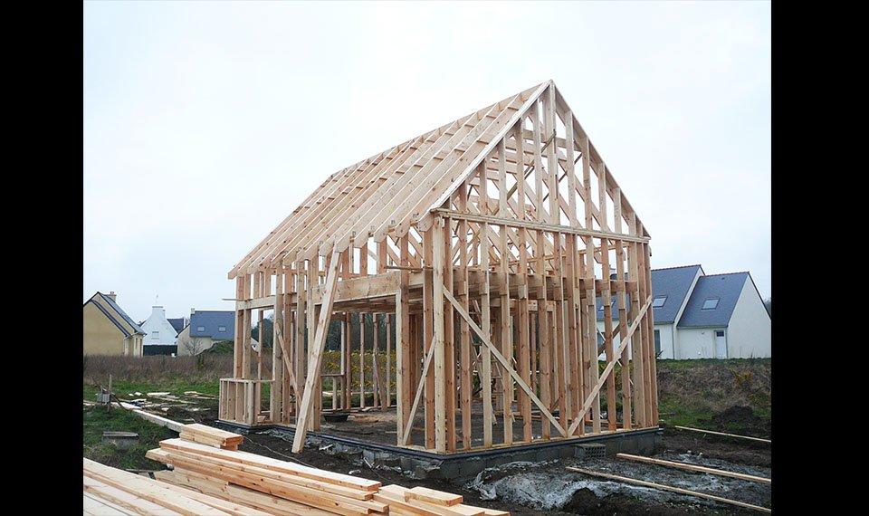 Budowa szkieletu widok 1 (zdjęcie) wykonawca EFIN www.domyefin.pl
