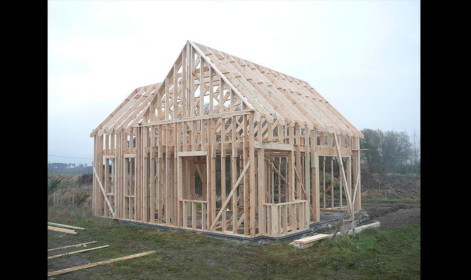 Budowa szkieletu widok 2 (zdjęcie) wykonawca EFIN www.domyefin.pl