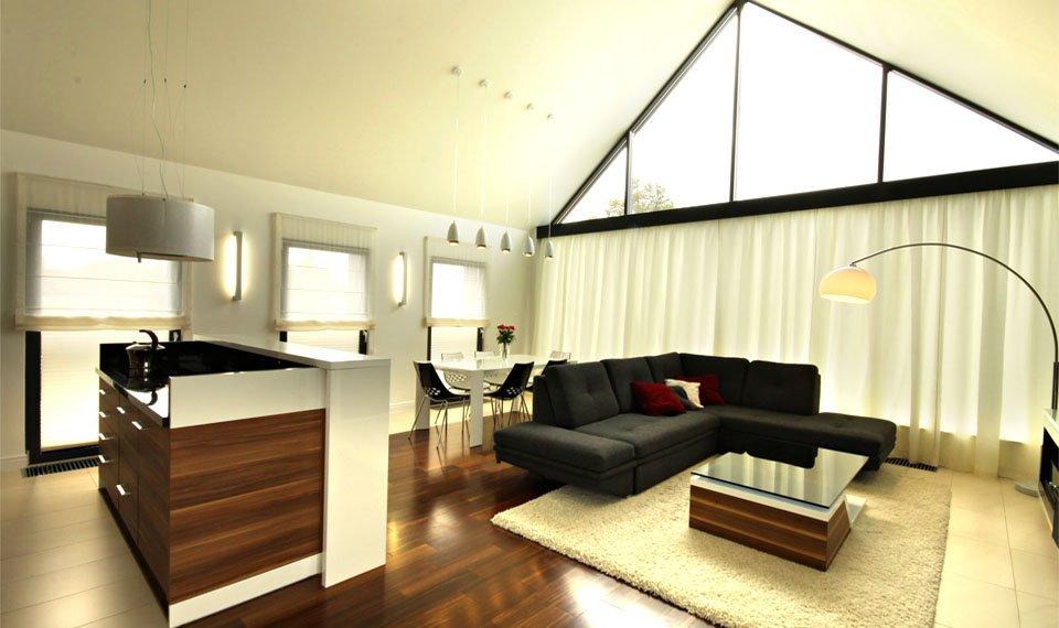 Projekt wnętrza - salon (zdjęcie)